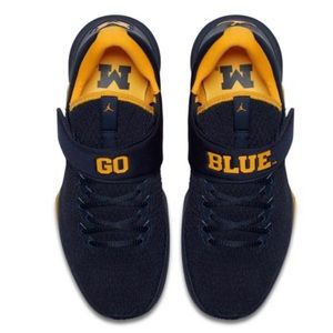 Jordan Trainer 3- Michigan